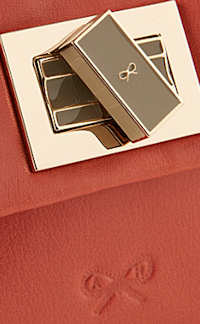 Anya Hindmarch Mini Gracie Bag clasp and bow
